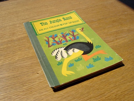 the jungle race book J pavlin G Seda