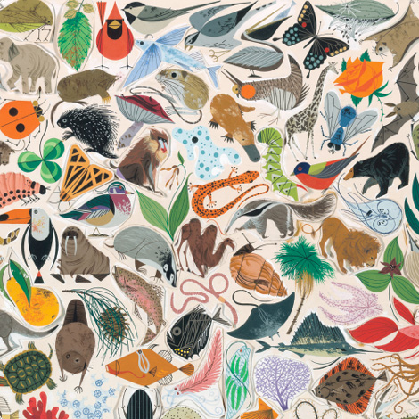 The Public Trust / Charley Harper Exhibition