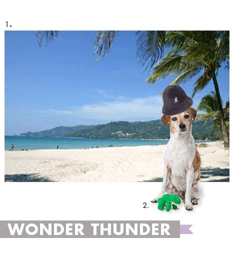 wonder thunder