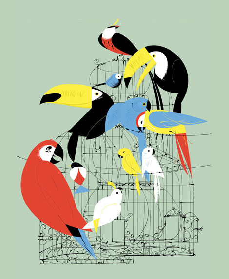 clayton junior, illustration, animation, uk, charley harper